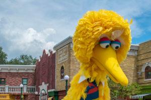Big Bird In Parade